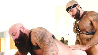 bearded hunk gets cocksucked..